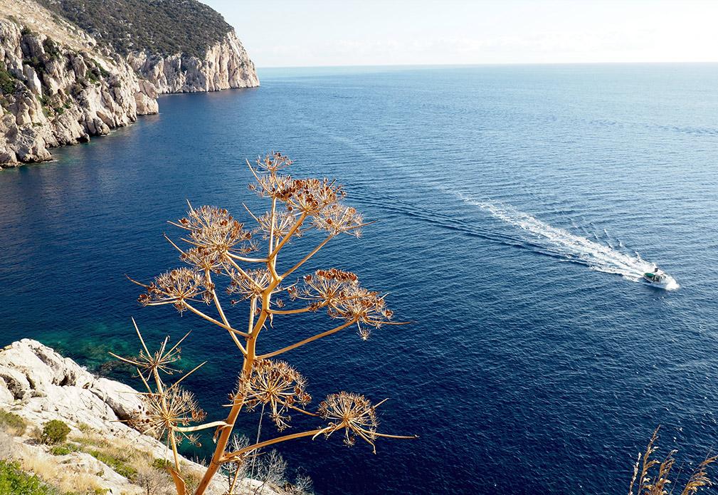 KTGW-Blog-MS-Sardinien-Teil1-Content-16