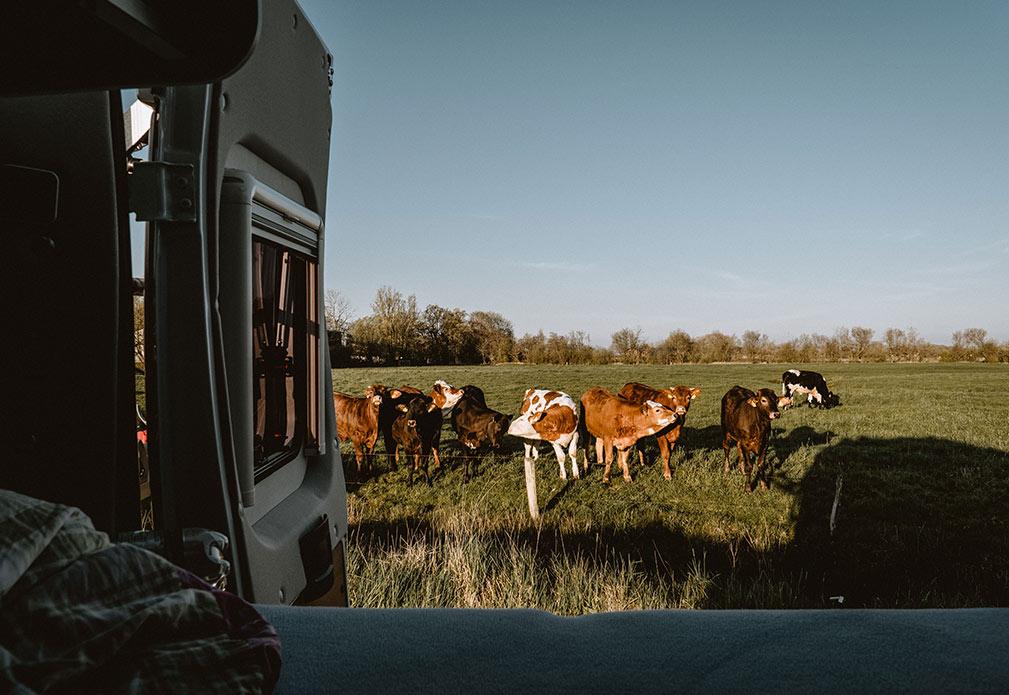 ktg-weinsberg-carablog-daniela-jungwirth-carabus-2019-sylt-content-20