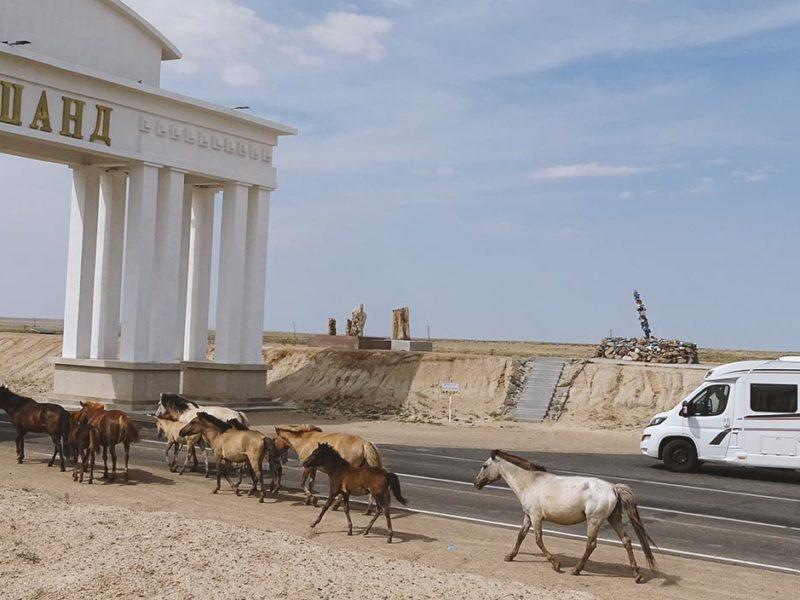 Die Seidenstraße im WEINSBERG Reisemobil erleben | Teil 2: Mongolei und China